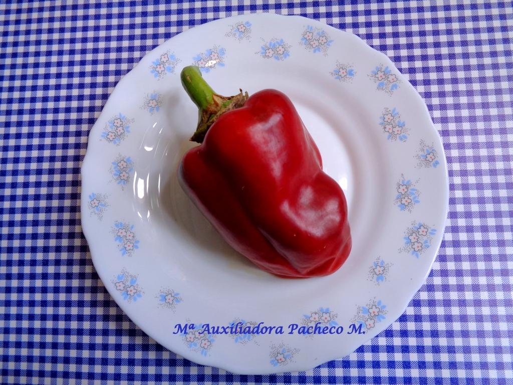 Pimiento rojo en un plato.